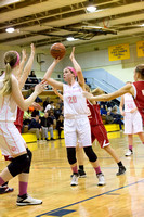 Notre Dame Varsity Girls Basketball vs Newark Valley 02-06-15